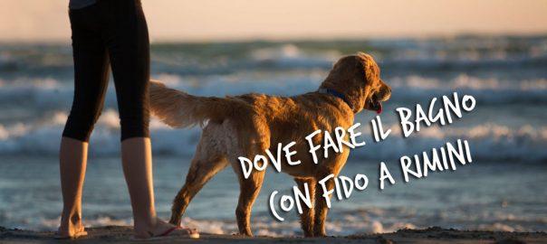 fare il bagno con il cane a Rimini